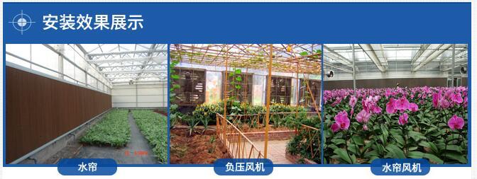温室大棚增湿降温方法方案_温室增湿降温产品介绍